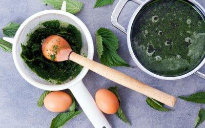 Soupe d'orties – Nässelsoppa