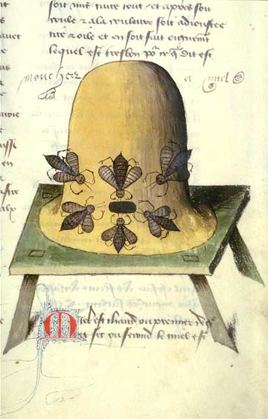 L'alimentation Médiévale 12