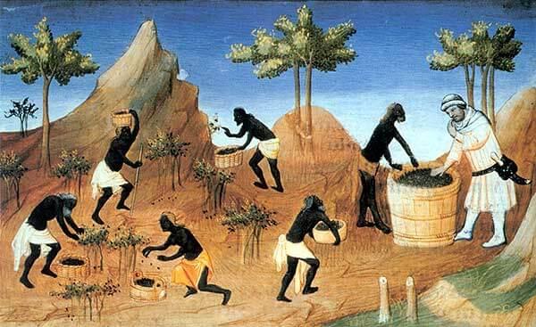 L'alimentation Médiévale 9