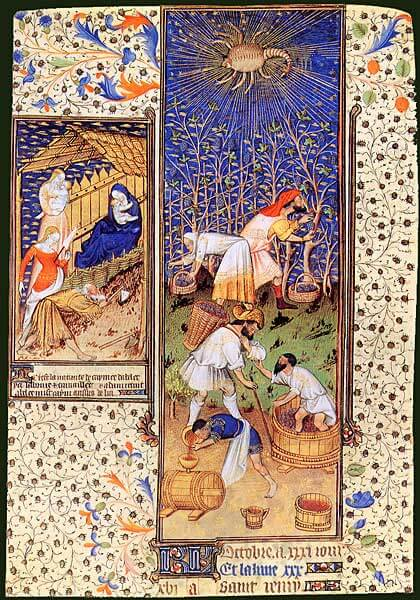 L'alimentation Médiévale 11